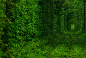 Tunnel-of-Love-in-Ukraine-2